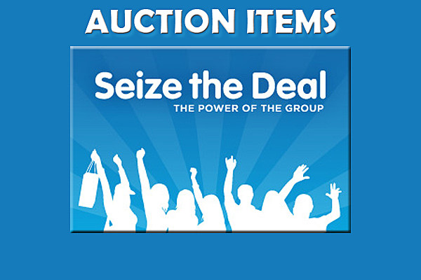 Seize-the-deal_Auction_620x420